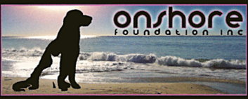 On Shore Foundation